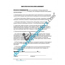 Employment Non-Disclosure Agreement