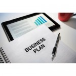 Professionally Drafted 5-Year Business Plan